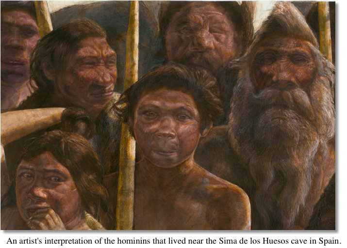 Early Hominins